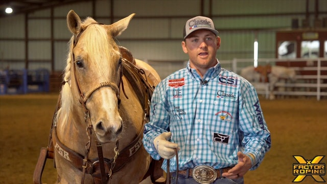 Properly Handling Cattle with Tyler Wade