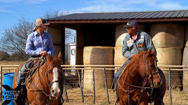 Steps on Scoring a Horse Correctly with Marty Becker and Chelsea Brown