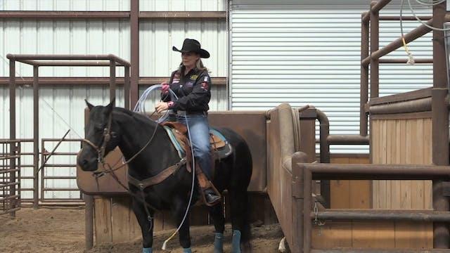Horsemanship In The Box With Lari Dee...