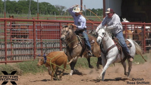 The Processing to a Good Stopping Horse with Joseph Harrison