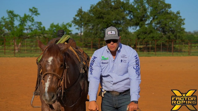 Importance Of Having Forgiveness In Your Horses Stop with Rhett Baker