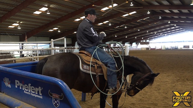 Keeping Your Horse Cool, Calm, and Collected in the Box with Tyler Wade
