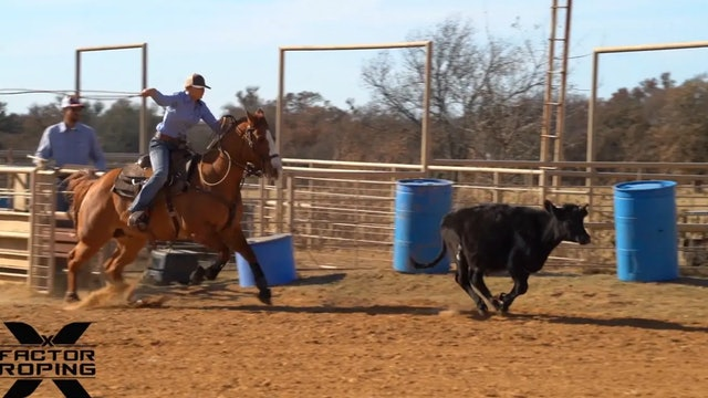 Keeping Your Horse Free and Consistent with Marty Becker and Chelsea Brown