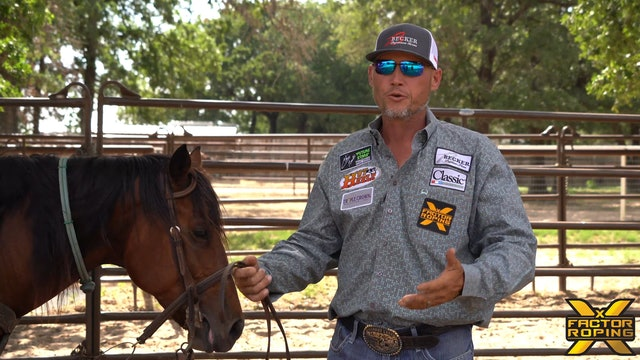 """Marty Becker """"Build a Foundation with your Horse"""""""