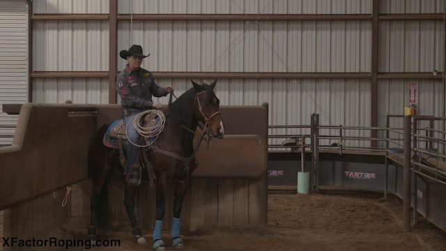 Keeping Your Horses Loose In The Box ...