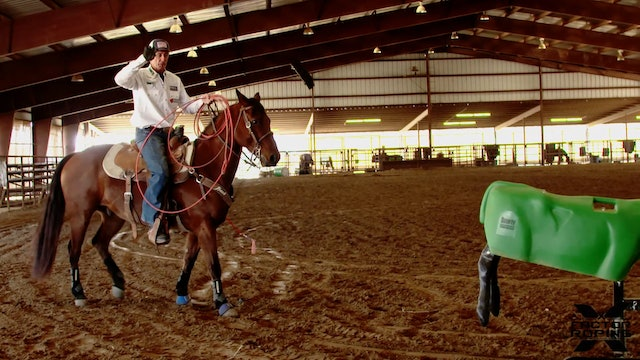 Peripheral Vision to Have the Steer in Sight While Keeping Position - Allen Bach