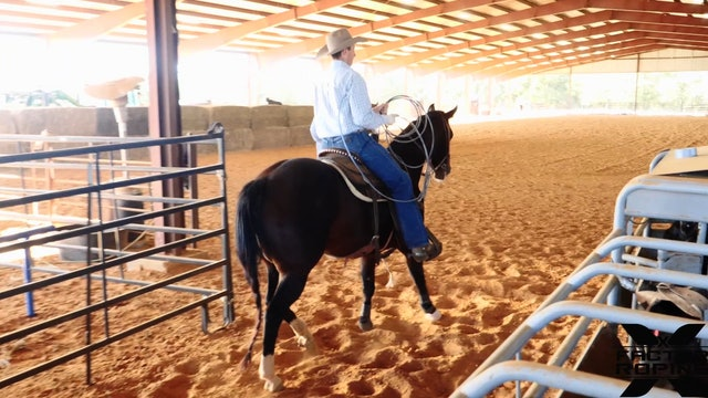 Training Tips for a Ratey Horse with Tate Kirchenschlager