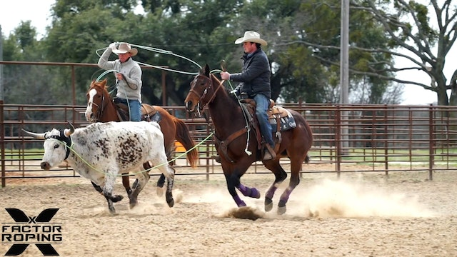 Bringing Back Down a Horse that is Getting Stronger in the Field with Lane Ivy