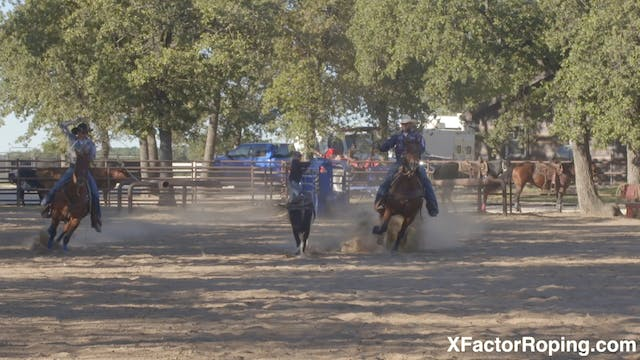Keeping Your Heel Horse Free with Mar...