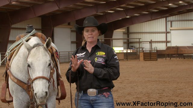 Facing Your Horse with Lari Dee Guy