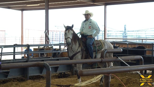 Erich Roger's Drills for your Head Horse