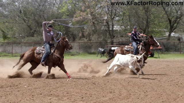 Heeling Steers That Are Wide Legged a...