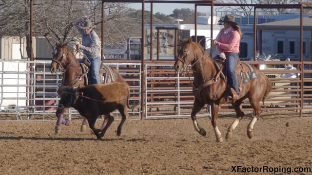 Horsemanship In The Box with Jackie C...