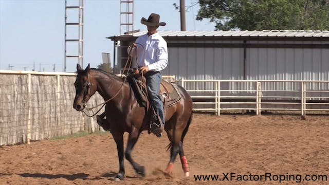 Slowing a Strong Horse Down Part 2 wi...