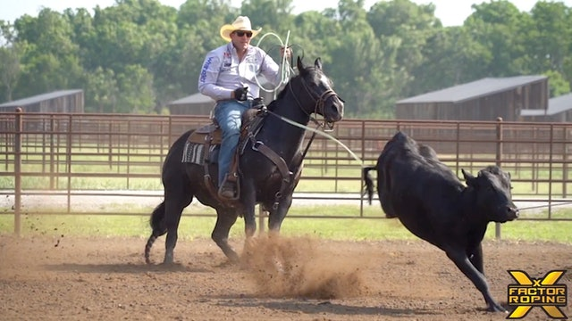Creating Confidence & Preparing Your Horse with Billie Jack Seabens