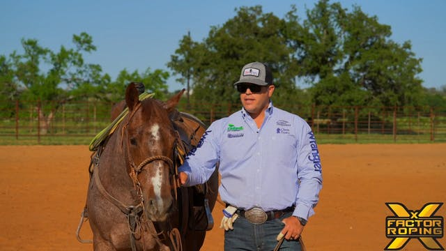 Keeping Your Heel Horses Working Corr...