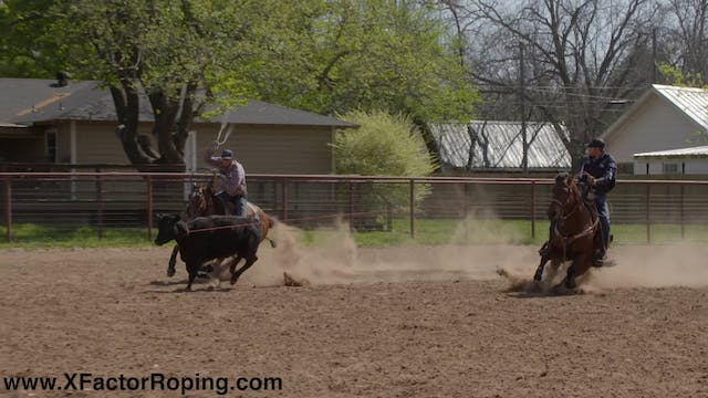 Entry In The Corner and Heel Horses F...