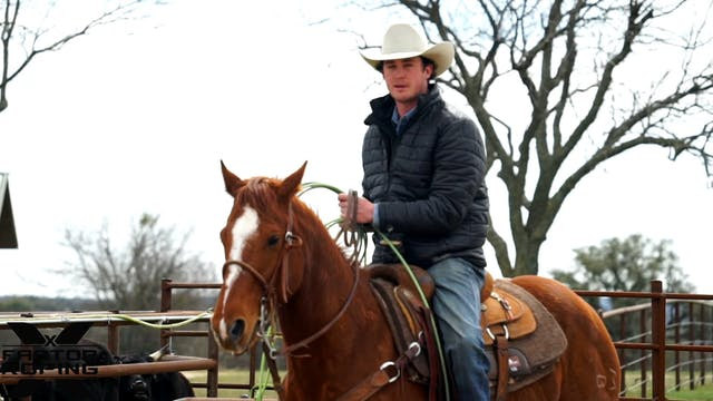 Box Work on Young Horses with Lane Ivy