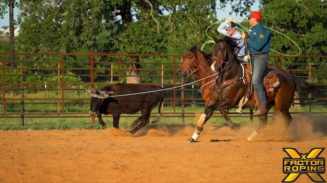 Keeping Young Horses Consistent Throu...