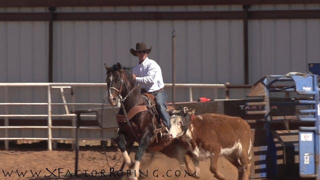 JoJo Lemond Slow Motion Heeling Horse 1