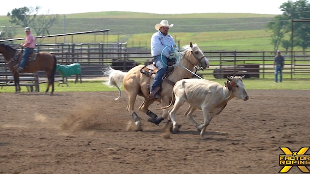 Making Every Run on Your Horse Count with Casey Hicks