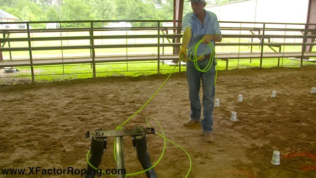 Using Your Vision While Heeling with ...