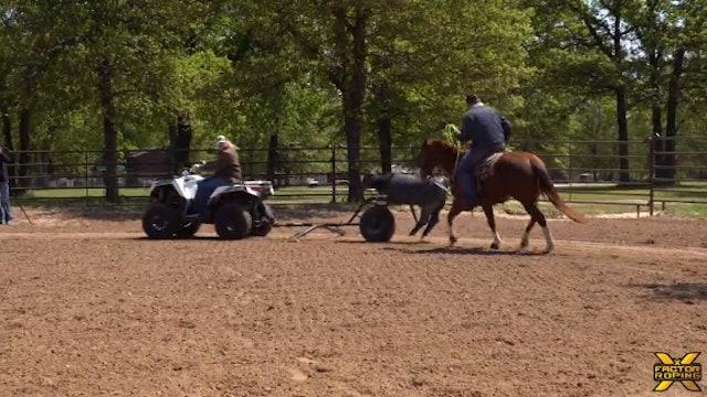 Paden Bray & Marty Becker: Dummy Preparation For Runs On Live Cattle Part 2/2