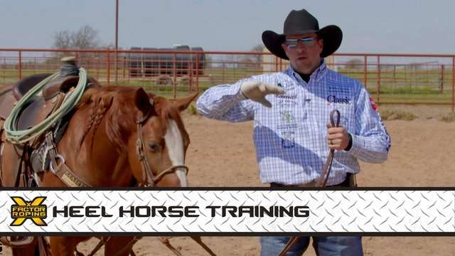 Heel Horse Training