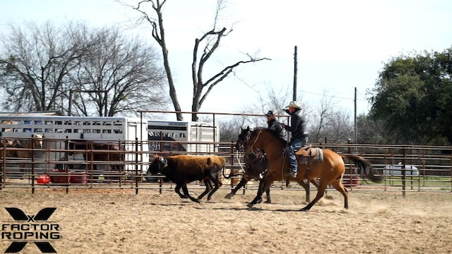 Teaching Your Horse to Love it's Job with Lane Ivy