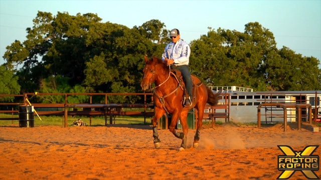 Teaching Your Younger Rope Horses To Stop with Rhett Baker