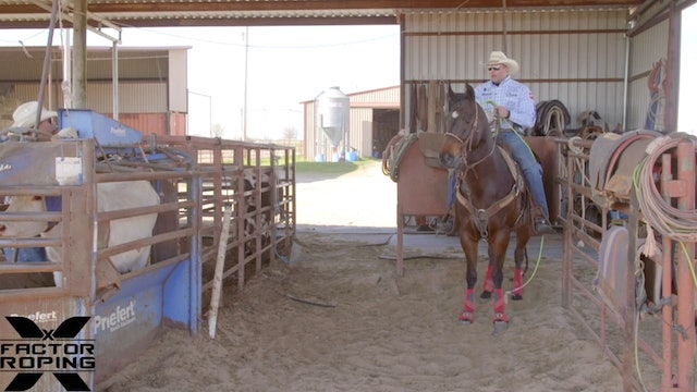 Squaring Your Horse Up in the Box with Joseph Harrison