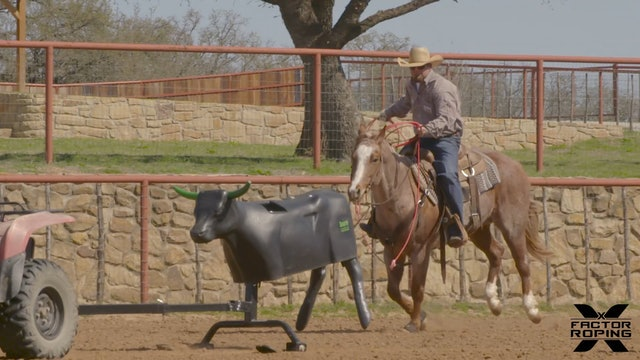 Starting Your Heel Horse to Leave the Box Using the Smarty with Ryan Motes