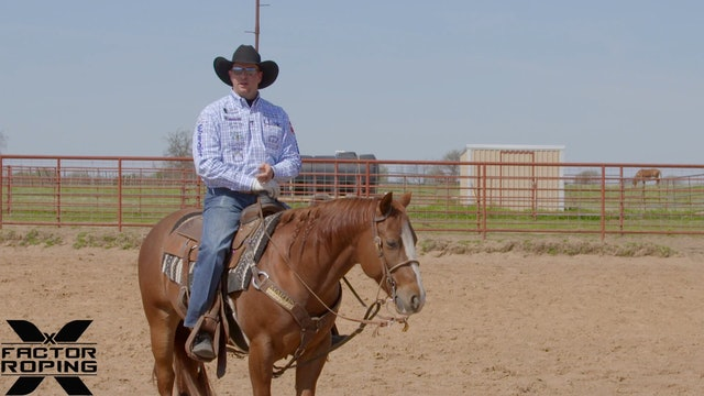 Saddle Choices with Joseph Harrison