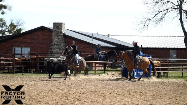 Transitioning a Ranch Horse to a Rope...