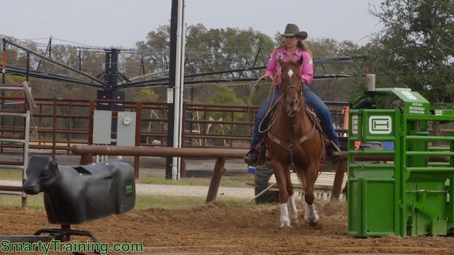 Controlling the Speed of Your Horse w...
