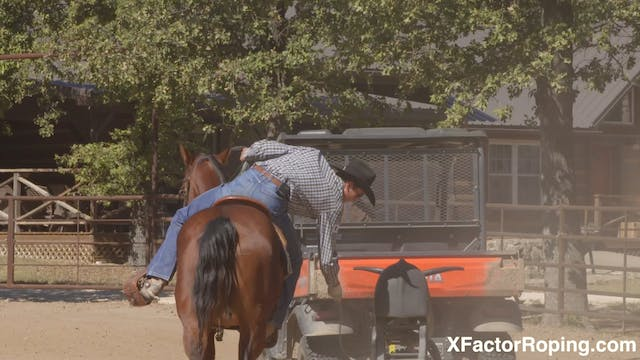 Training a Heel Horse with Marty Becker