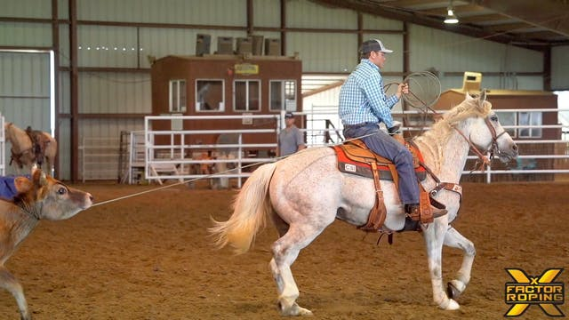 Drills for Starting a Head Horse with...