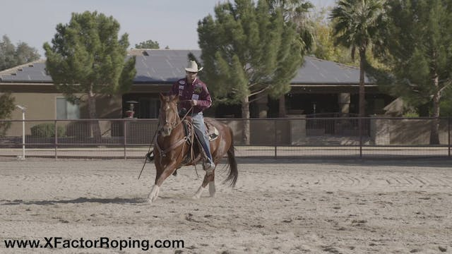 Stopping Your Horse with Cesar De La ...