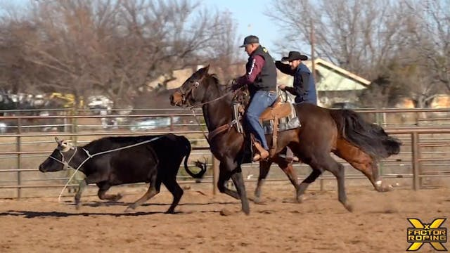 "Levi Simpson's Practice Horse ""J-Lo"" ..."