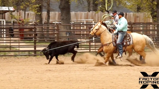 How to Rope Steers That Go Right or Left with Marty Becker