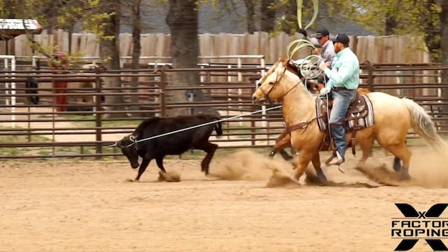 How to Rope Steers That Go Right or L...