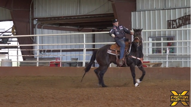 Breaking Down the Mechanics of Your Horse Facing With Tyler Wade