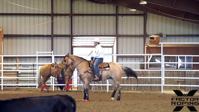 Teaching a Horse to Face with Tyler Wade