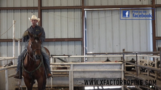 Horsemanship in the Box with Kinney Harrell