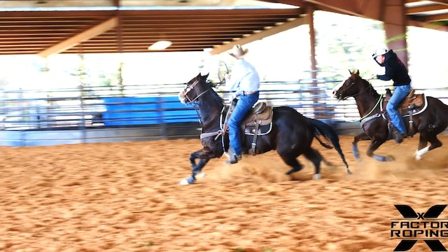 Handling Cattle Correctly with Tate Kirchenschlager