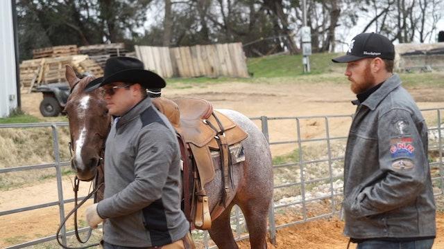 How to Properly Bit your Horse with Rhett Baker