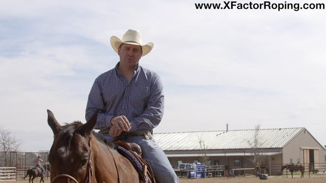 3 Parts To Being A Good Team Roper wi...