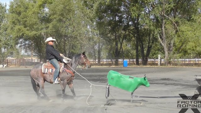 Heeling The Sled with Pace Freed