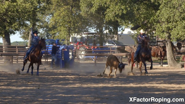 When to Reset a Heel Horse with Marty Becker