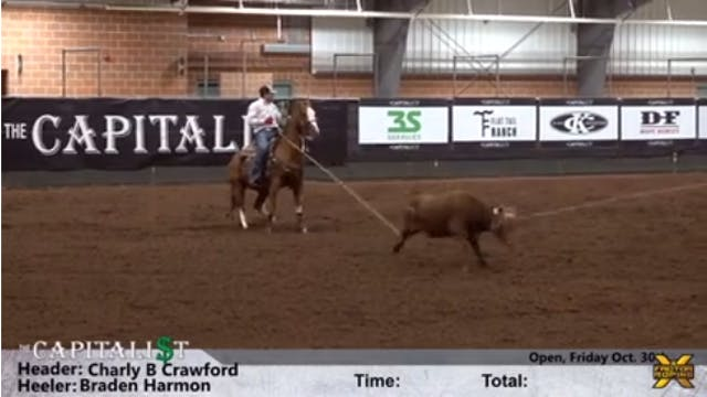 The Capitalist - Open Roping
